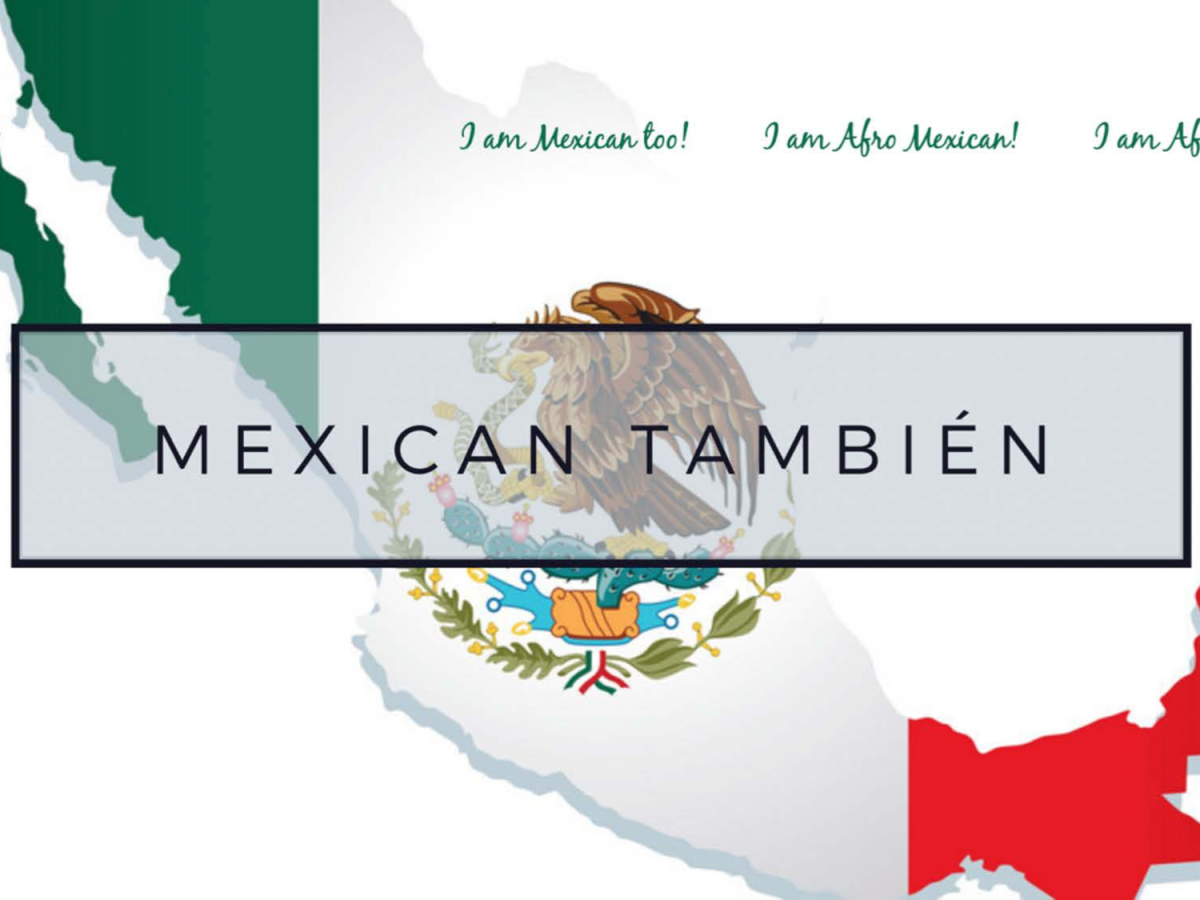 Mexican Tambien Project